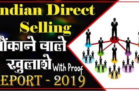 Total Direct Seller in India in 2020