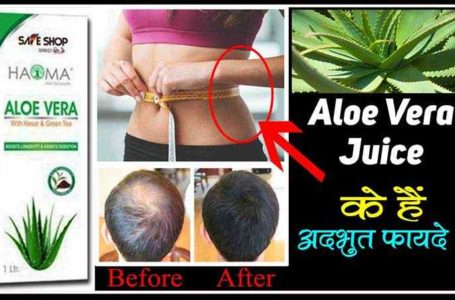 Aloe Vera Juice Benefits in Hindi Benefits of Aloe Vera